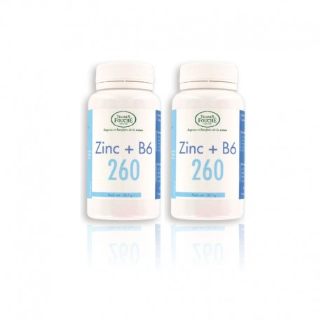 LOT DE 2 ZINC B6 260