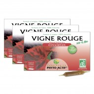Lot de 3 Vigne rouge