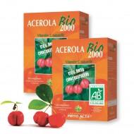 LOT DE 2 ACEROLA BIO 2000