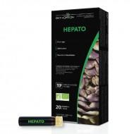 AMPOULES HEPATO BIO