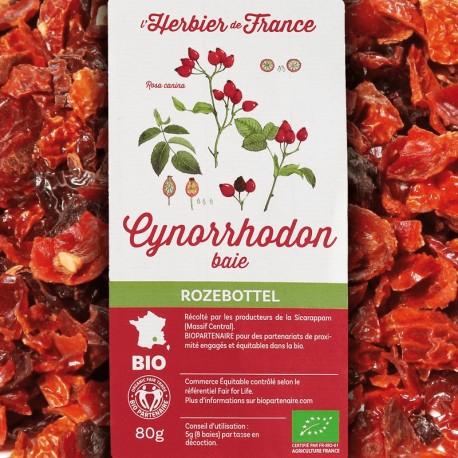 Cynorrhodon