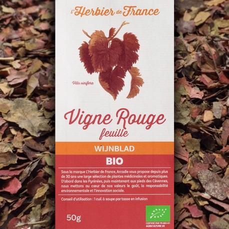 Vigne rouge feuilles